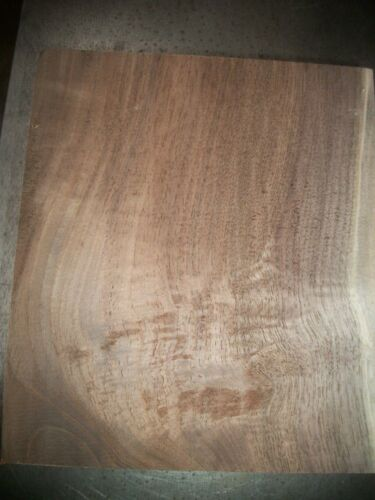 """1 PC WALNUT LUMBER WOOD AIR DRIED BOARD 2 1/2"""" THICK LOT 101S CARVING BLOCK"""