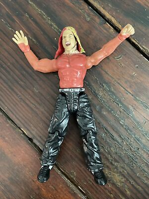 Jeff Hardy Boyz Jakks Titan Tron Live TTL Wrestling Action Figure 1999 WWF WWE