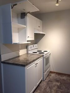 RENT INCENTIVES!!  2 BEDROOM RENOVATED APARTMENT