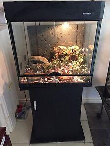 Reptile enclosure Gympie Gympie Area Preview