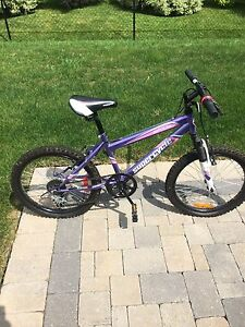 Young Girls or Boys Bike (Nearly new)