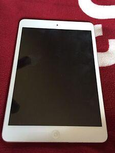 64 GB iPad Mini