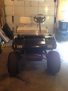 DS golf cart gas
