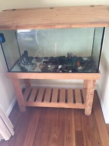 3ft Fish Tank Turtle Accessories Maleny Caloundra Area Preview