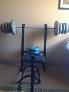 Bench weight chinup bar