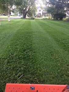 Lawn care, Landscaping, Property Maintenance