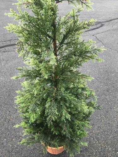 Pottery Barn Lit Juniper Tree Green - Medium Christmas Holiday Decor NEW