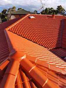 Roof painting Services Lidcombe Auburn Area Preview