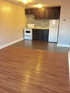 Avail NOW! Bright Spacious 1bd, Heat Incl, Secure Bldg, Central!