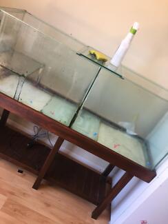 Split Fish tank with lids