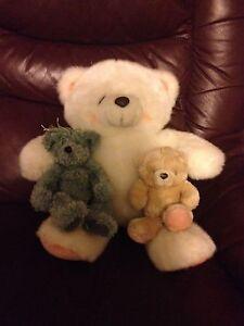 Teddy Bears Woodvale Bendigo Surrounds Preview