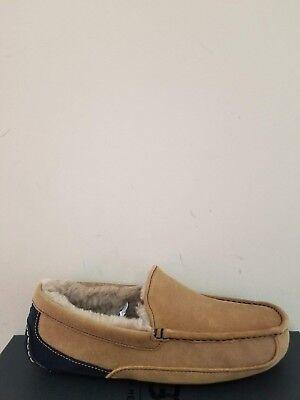 c0158f7e8c1 Ugg Australia Men`s Ascot Slipper Size 10 NIB