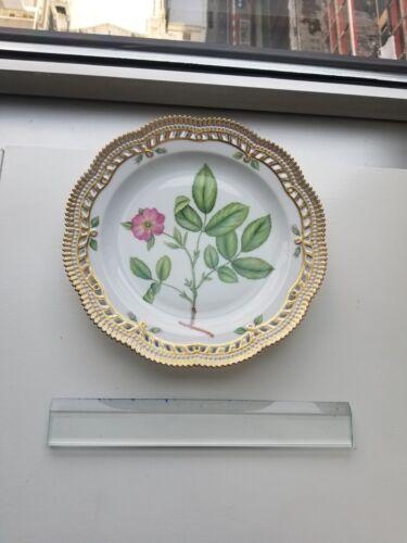Flora Danica Royal Copenhagen Denmark -Rosa Carelica Fr