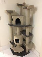 170cm Cat Tree Scratcher Scratching Post Pole Mosman Mosman Area Preview