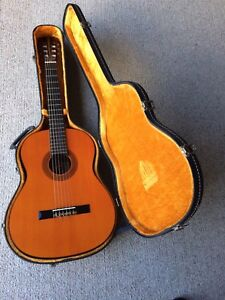 Guitar with black carry hard case