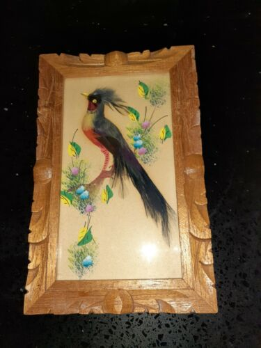 Mexico Feather ART Pictures. Set of 2. BIRDS w/real Feathers Wood Carved Frames