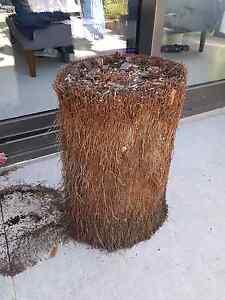Fern tree base planter/pot Prahran Stonnington Area Preview
