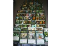 ***Multi-Color Elf Collection*** Elves Tribal Deck EDH MTG Rare Magic Cards