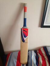 Cricket Bat Hawthorne Brisbane South East Preview