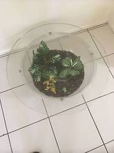 ROUND TERRARIUM TABLE Forest Lake Brisbane South West Preview