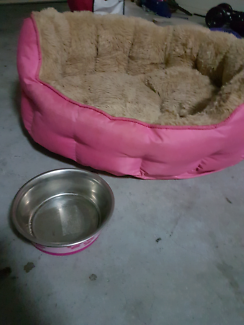 Small dog bed and bowl