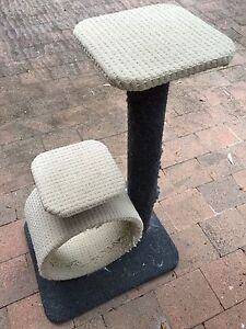 Scratching Post for cats Turramurra Ku-ring-gai Area Preview