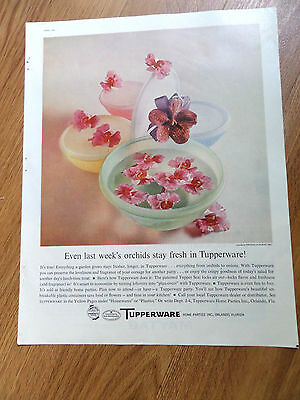 1960 Tupperware Ad   Even Last Week's Orchids stay Fresh in Tupperware
