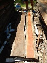 Timber slabs Lota Brisbane South East Preview