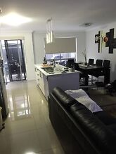 Room available ,  modern ff unit  own bathroom, walk to CBD Gladstone Gladstone City Preview