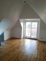 Doon Drywall Installation