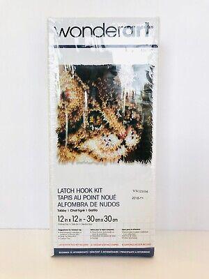 Latch Hook Instructions (Wonderart Latch Hook Kit Tabby Cat 12 x 12 Canvas Yarn Instructions New in)