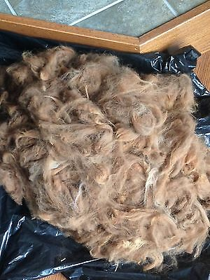 - 100% Alpaca Raw Fleece - Fiber 6 oz. Prime Blanket - Brown - FREE SHIPPING