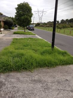 PROFESSIONAL LAWN MOWING $25