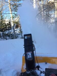 10/29 snowblower with light may take a non