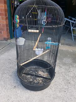 Big Cage cheap...40$