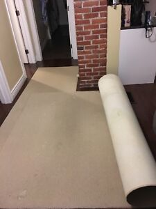 Large Carpet and Runner