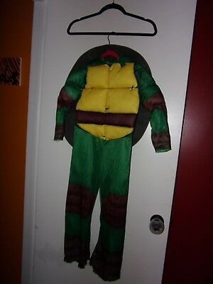 Teenage Mutant Ninja Turtles Boys M (8-10) Halloween Costume (Raphael) - Teenage Mutant Ninja Turtles Couples Costumes