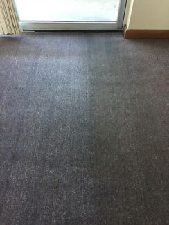 Xfactor carpet steam cleaning
