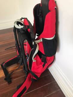 Phil N Teds Baby Carrier Backpack