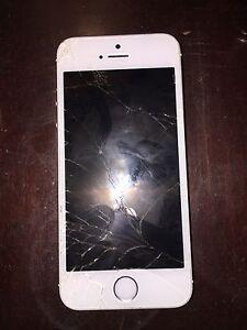 IPhone 5s- Locked to Telus- Broken Screen- Works
