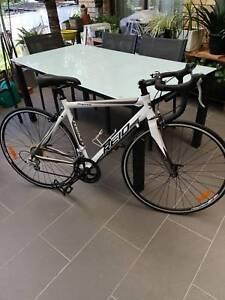 REID  Ospray Bike .