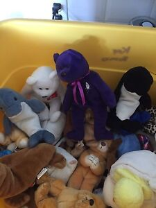 Tag less beanie babies from the 90's