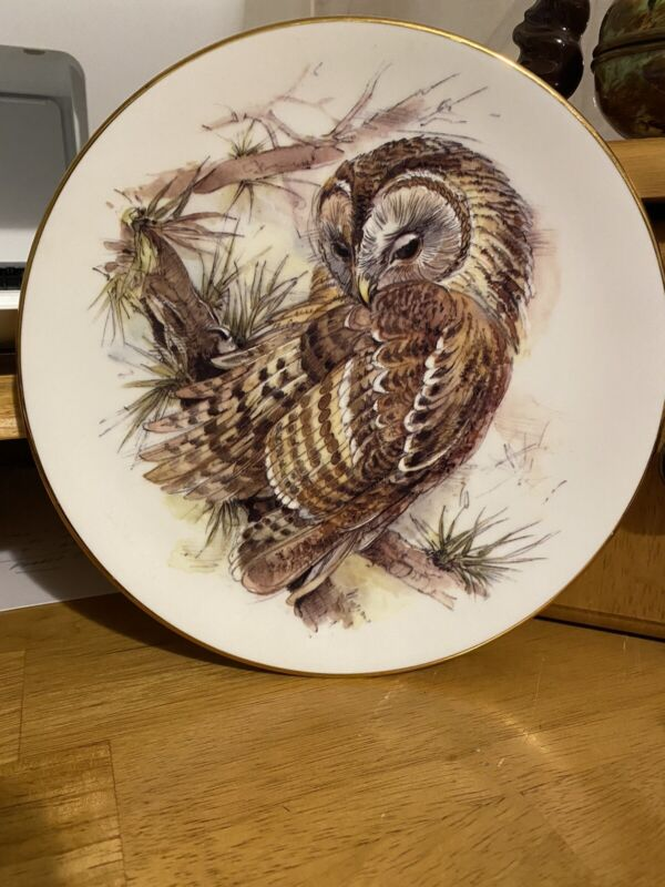 ROYAL GRAFTON Fine Bone England The OWLS Collection Plates #3 in set, Tawny Owl