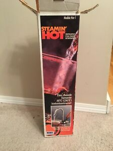 Steaming hot water dispenser