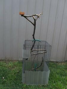Bird Cage for Galah or Budgie or Guinea Pig Gordon Tuggeranong Preview