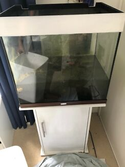 Fish tank 110 L  with storage cabinet.