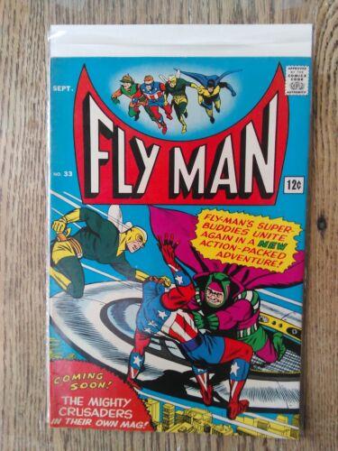 Fly Man #33