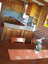 Room for rent WINDSOR GARDENS Walkerville Walkerville Area Preview
