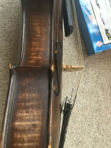 Very Old Stainer Full Size 4/4 Violin
