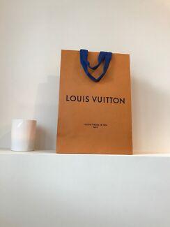 Louis Vuitton Paper Bag - Medium